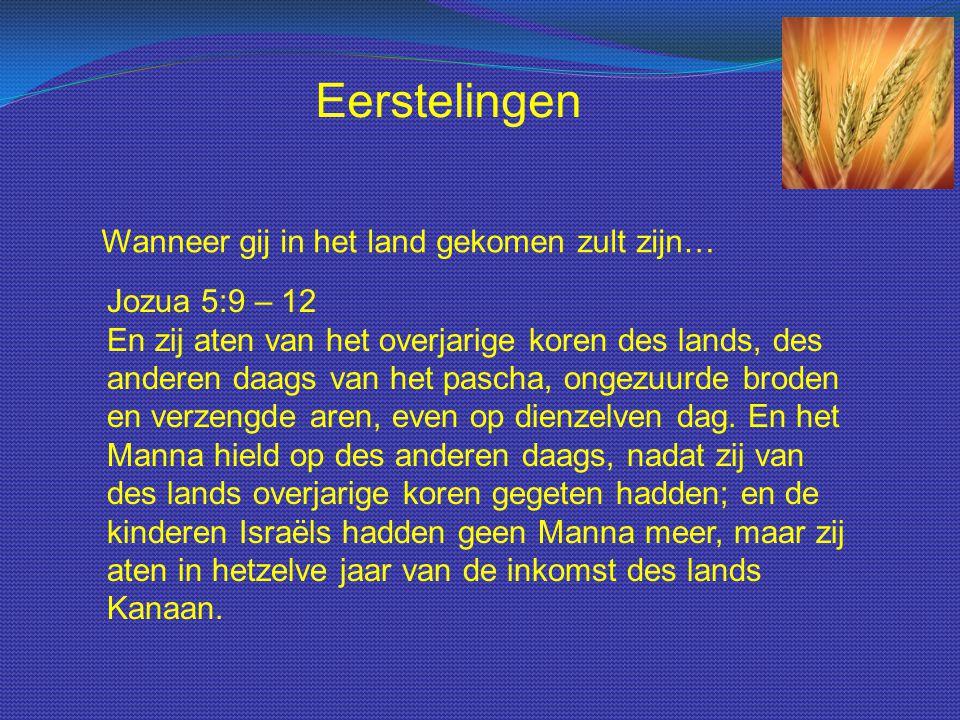 Wanneer gij in het land gekomen zult zijn… Eerstelingen Jozua 5:9 – 12 En zij aten van het overjarige koren des lands, des anderen daags van het pasch