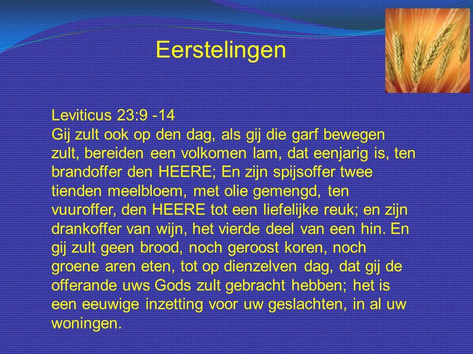 Leviticus 23:9 -14 Gij zult ook op den dag, als gij die garf bewegen zult, bereiden een volkomen lam, dat eenjarig is, ten brandoffer den HEERE; En zijn spijsoffer twee tienden meelbloem, met olie gemengd, ten vuuroffer, den HEERE tot een liefelijke reuk; en zijn drankoffer van wijn, het vierde deel van een hin.