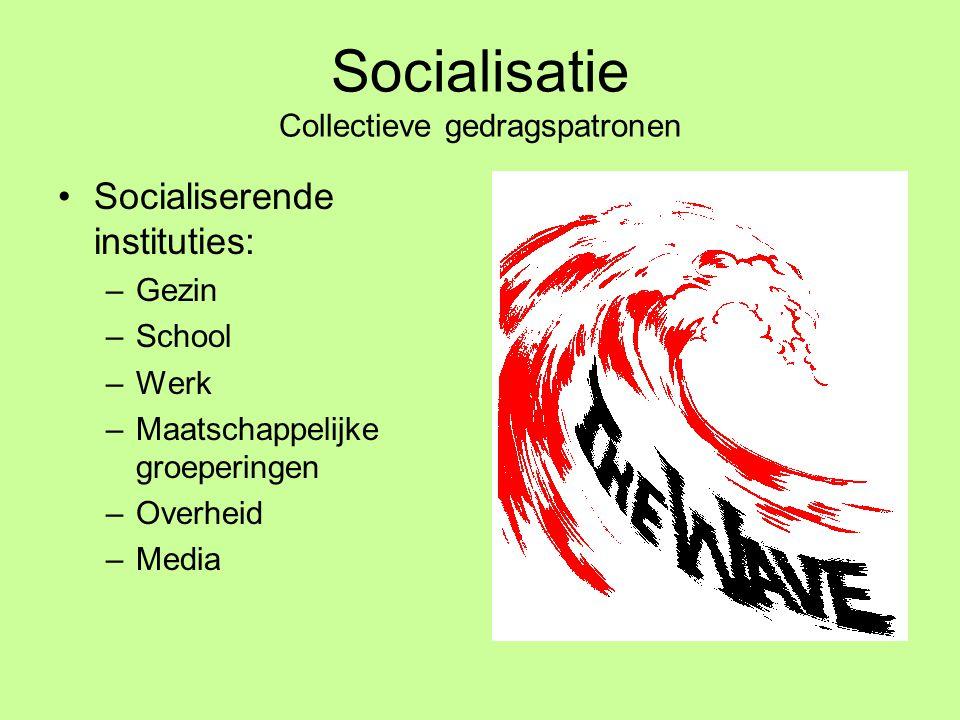 Socialisatie Collectieve gedragspatronen •Socialiserende instituties: –Gezin –School –Werk –Maatschappelijke groeperingen –Overheid –Media