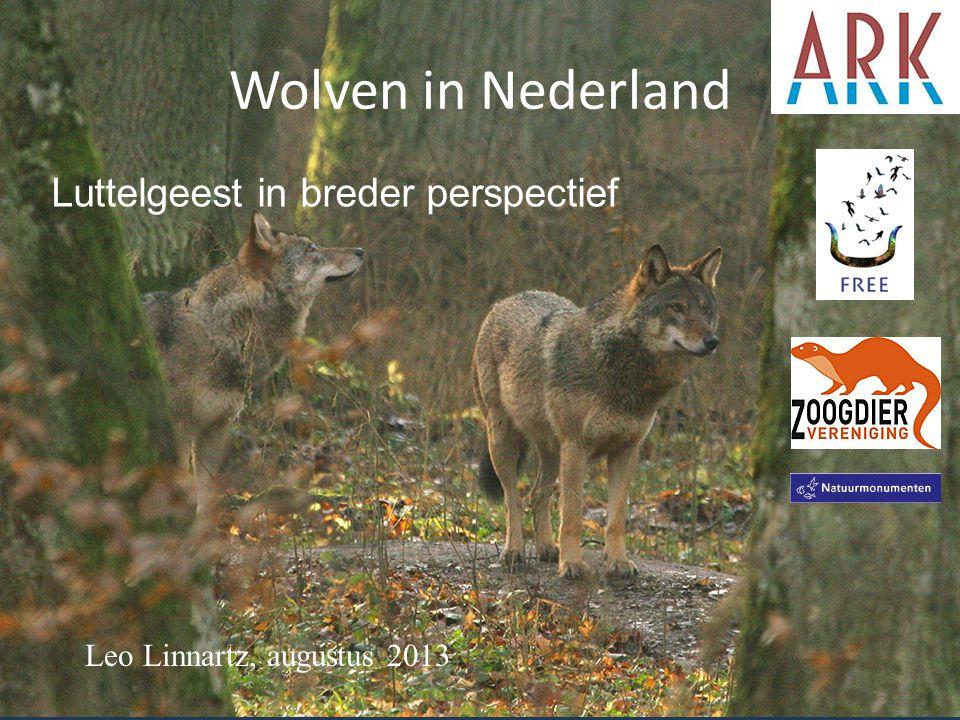 WolvenInNederland.nl • Wil mensen voorbereiden op de komst van wolven naar Nederland • Streeft naar een conflict-arm samenleven van mens en wolf • Is een samenwerkingsverband van (natuur)organisaties en zoekt verdere verbreding