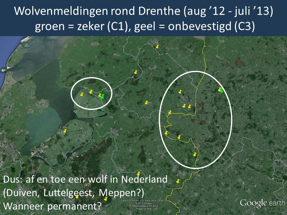 Wolvenmeldingen rond Drenthe (aug '12 - juli '13) groen = zeker (C1), geel = onbevestigd (C3) Dus: af en toe een wolf in Nederland (Duiven, Luttelgees
