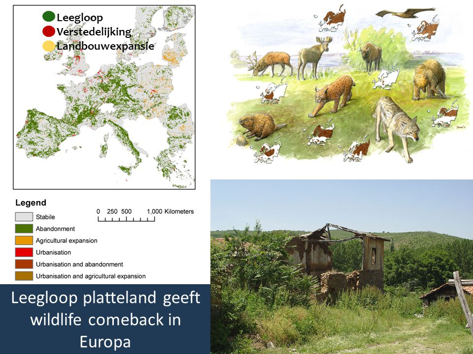Leegloop Verstedelijking Landbouwexpansie Leegloop platteland geeft wildlife comeback in Europa