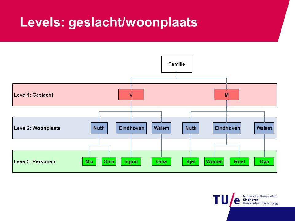 Levels: geslacht/woonplaats Level3:Personen Level2:Woonplaats Level1:GeslachtMV Familie EindhovenWalemNuthEindhovenWalemNuth RoelIngridSjefMiaWouterOp
