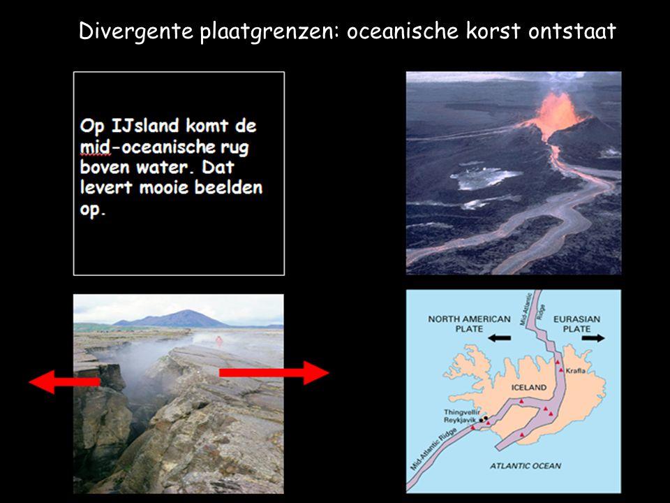 Mid-oceanische rug Asthenosfeer Centrale slenk De breuk waardoor magma opstijgt. Lithosfeer lithosfeer Convectiestromingen Divergente plaatgrenzen: oc