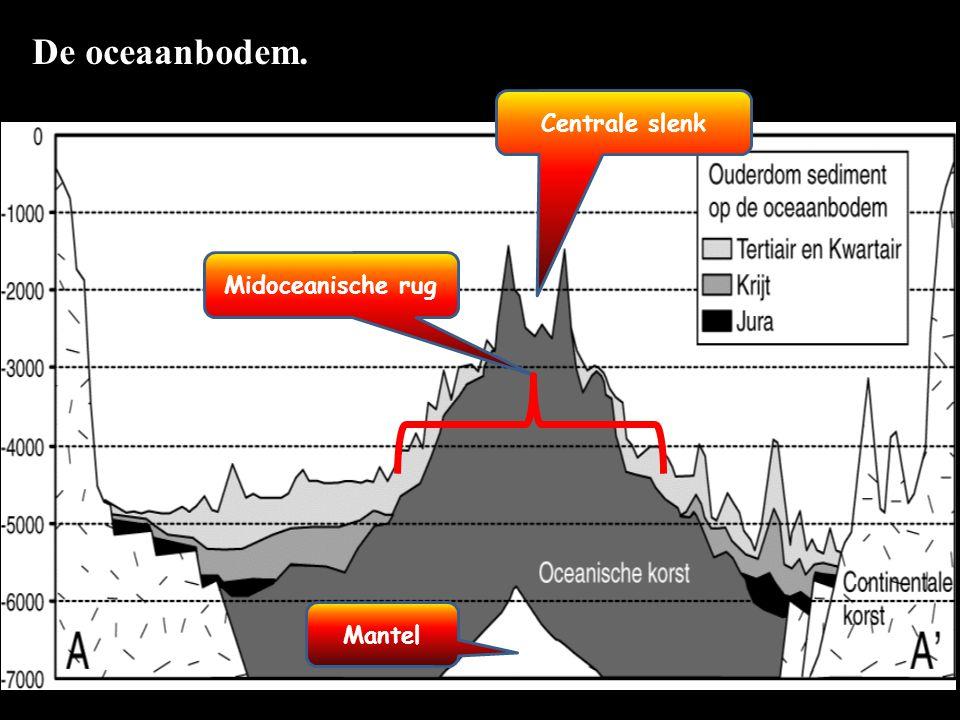 De oceaanbodem. Centrale slenk Midoceanische rug Mantel