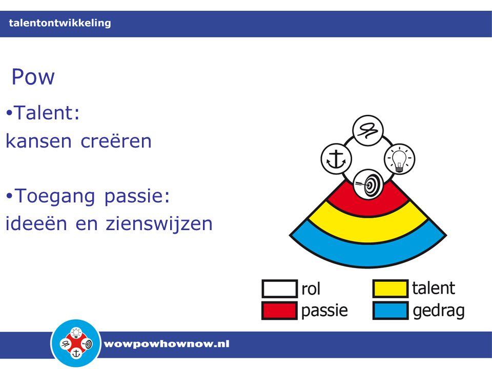Pow  Talent: kansen creëren  Toegang passie: ideeën en zienswijzen