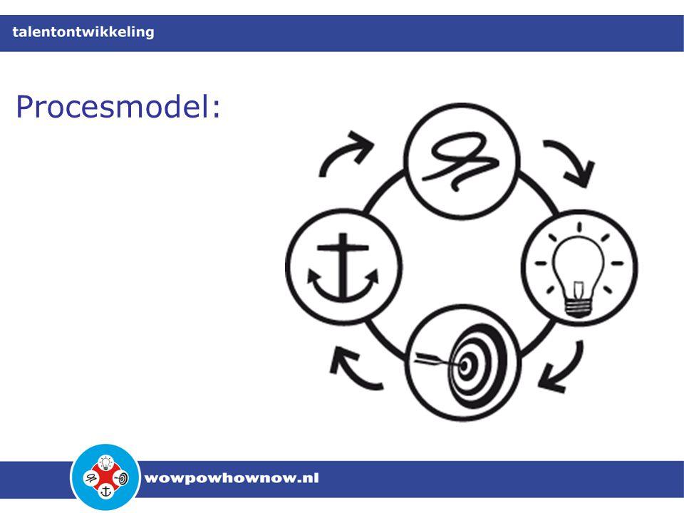 Procesmodel: