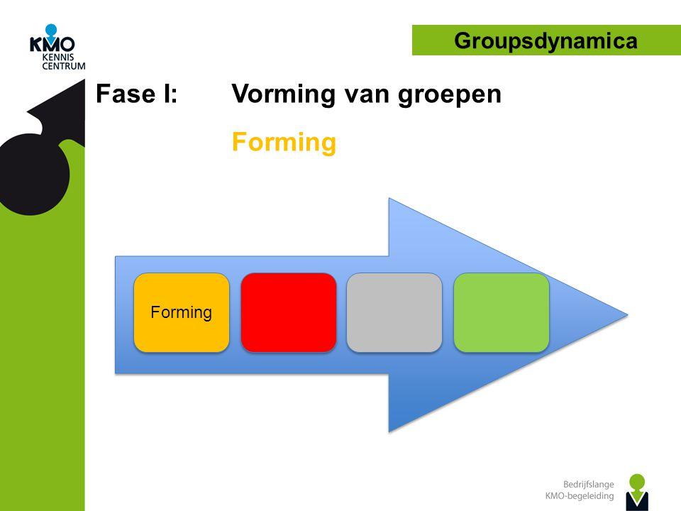 Groupsdynamica Fase III: Vorming van groepen Performing Taak van de begeleider • Afstand nemen, eerder gaan coachen