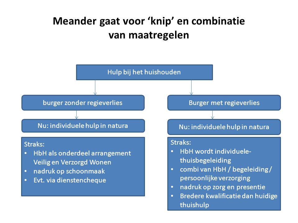 Meander gaat voor 'knip' en combinatie van maatregelen Hulp bij het huishouden burger zonder regieverliesBurger met regieverlies Nu: individuele hulp