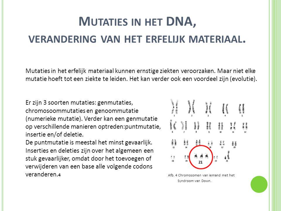 M UTATIES IN HET DNA, VERANDERING VAN HET ERFELIJK MATERIAAL. Mutaties in het erfelijk materiaal kunnen ernstige ziekten veroorzaken. Maar niet elke m