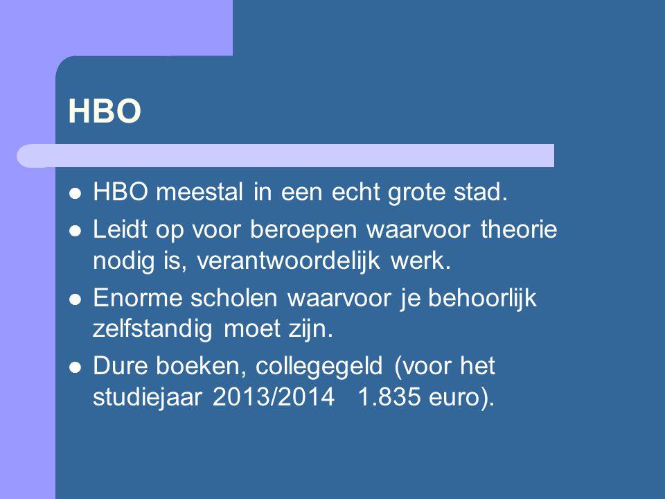 HBO  HBO meestal in een echt grote stad.  Leidt op voor beroepen waarvoor theorie nodig is, verantwoordelijk werk.  Enorme scholen waarvoor je beho