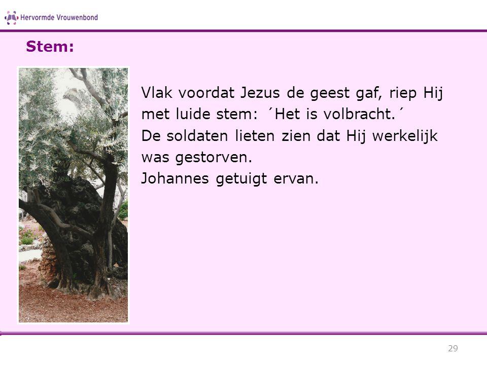 Vlak voordat Jezus de geest gaf, riep Hij met luide stem: ´Het is volbracht.´ De soldaten lieten zien dat Hij werkelijk was gestorven. Johannes getuig