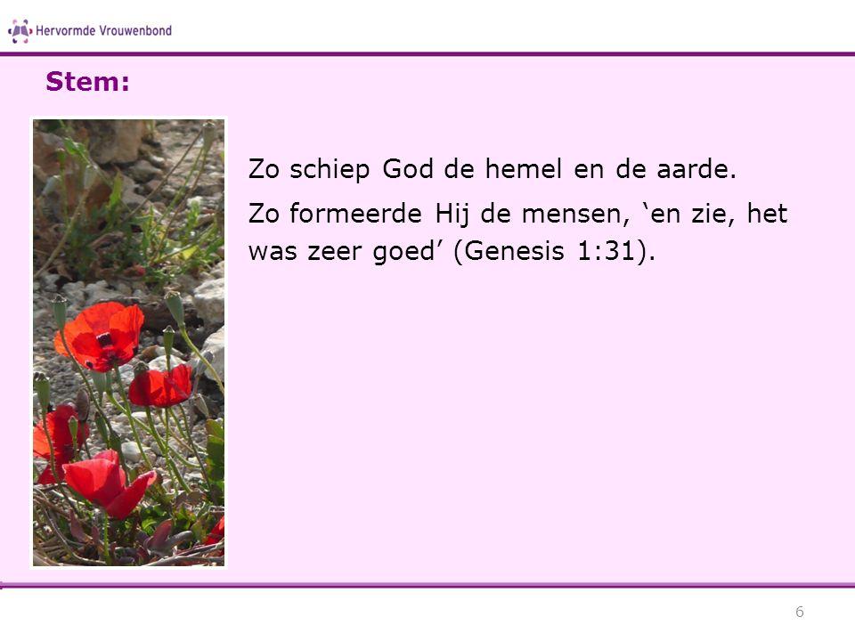 Zo schiep God de hemel en de aarde. Zo formeerde Hij de mensen, 'en zie, het was zeer goed' (Genesis 1:31). 6 Stem: