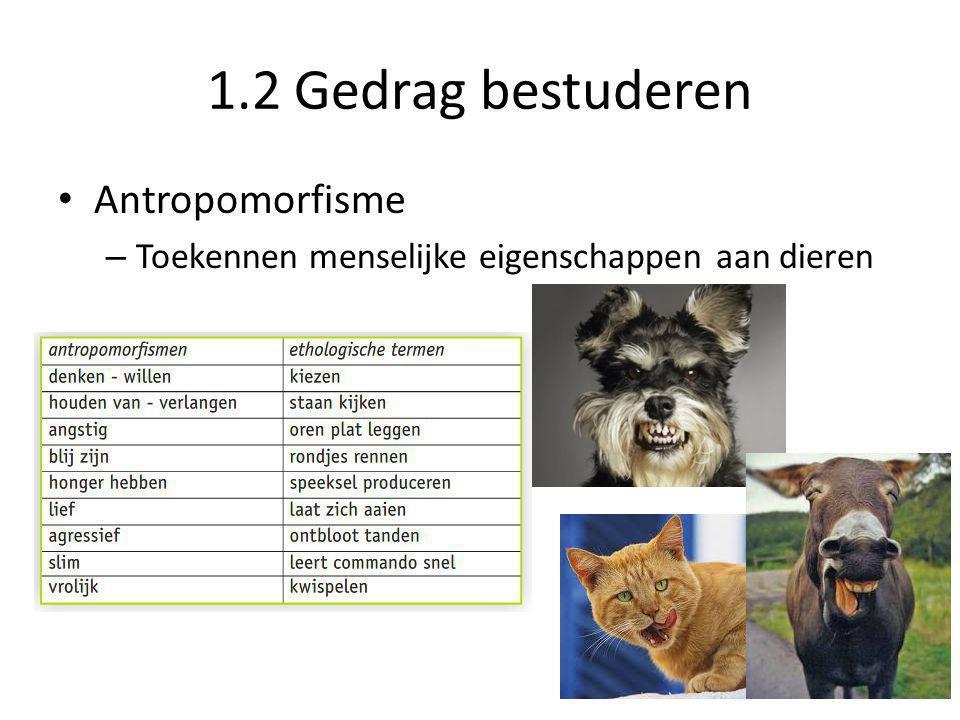 1.2 Gedrag bestuderen • Antropomorfisme – Toekennen menselijke eigenschappen aan dieren