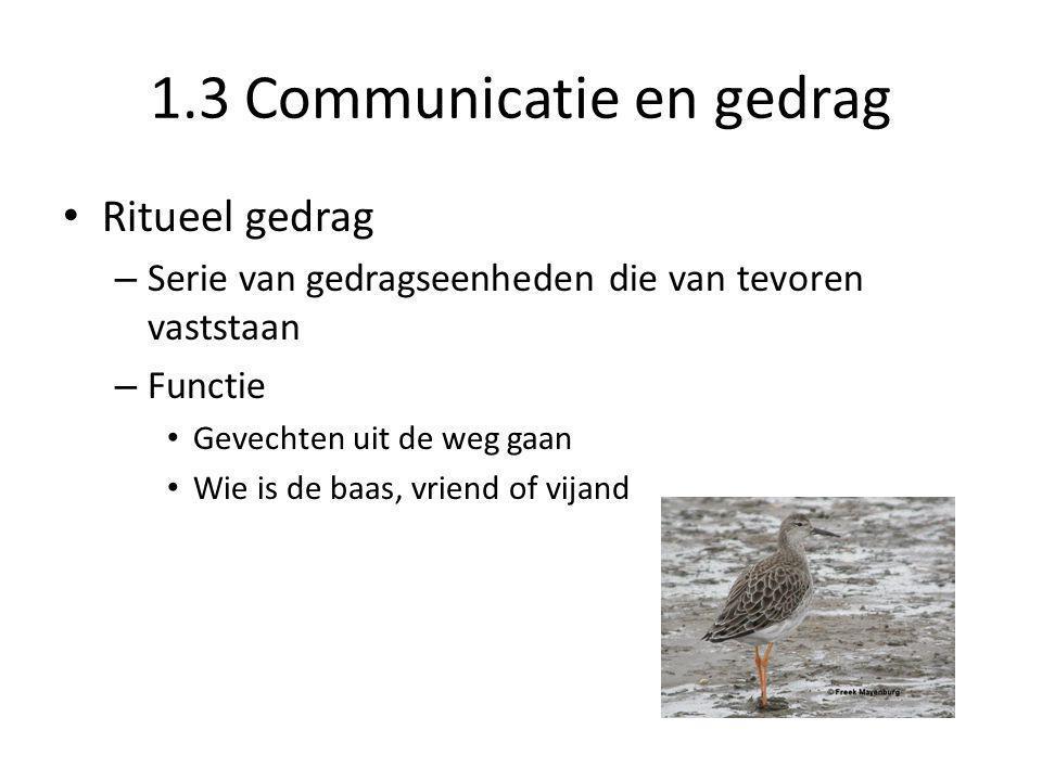 1.3 Communicatie en gedrag • Ritueel gedrag – Serie van gedragseenheden die van tevoren vaststaan – Functie • Gevechten uit de weg gaan • Wie is de ba