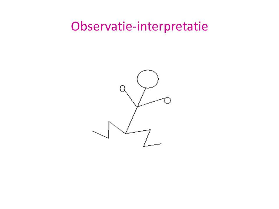 Observatie-interpretatie