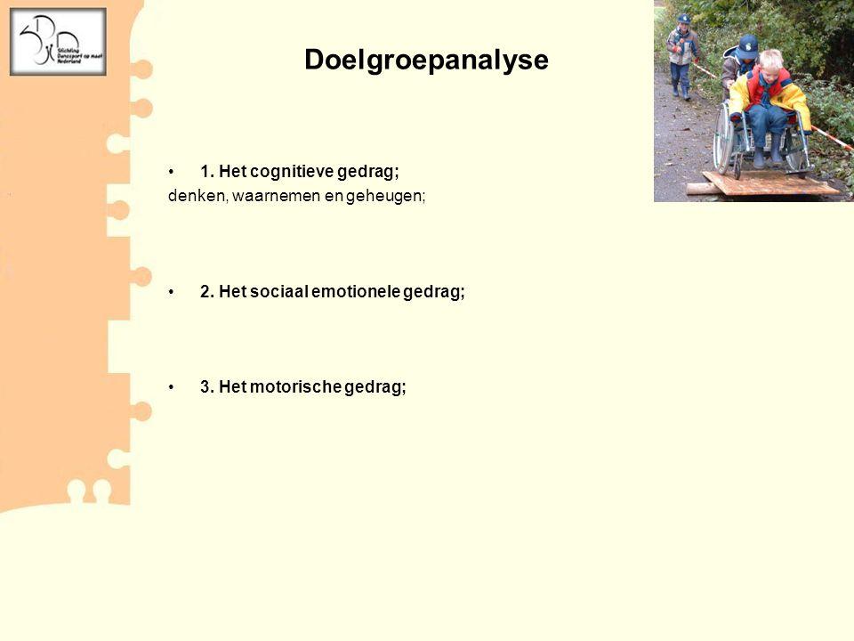 •1. Het cognitieve gedrag; denken, waarnemen en geheugen; •2. Het sociaal emotionele gedrag; •3. Het motorische gedrag; Doelgroepanalyse