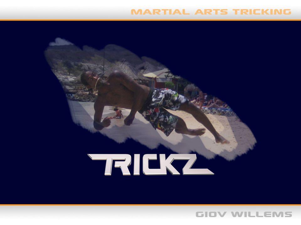 -Het ontstaan -Trickz vs Freerunning/ Parkour -Moves -Gatherings -Top Trickers -Waar staat Trickz nu -Twee korte filmpjes -Interesse?