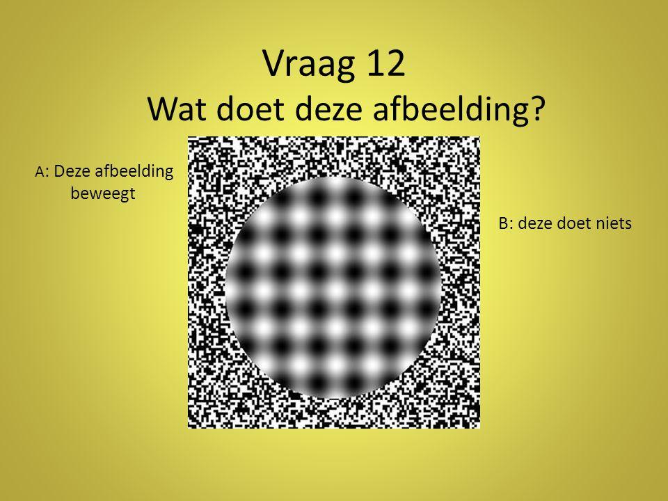 Vraag 12 Wat doet deze afbeelding? A : Deze afbeelding beweegt B: deze doet niets
