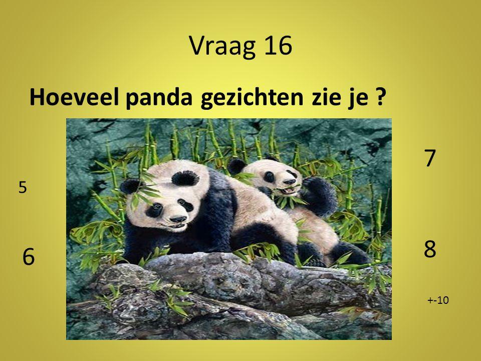 Vraag 16 Hoeveel panda gezichten zie je ? 5 6 7 8 +-10