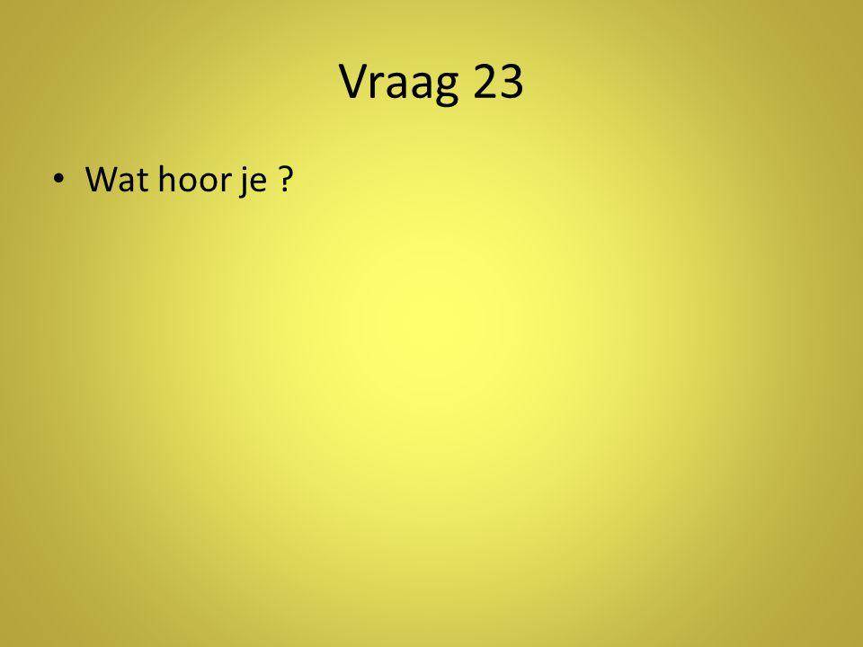 Vraag 23 • Wat hoor je ?