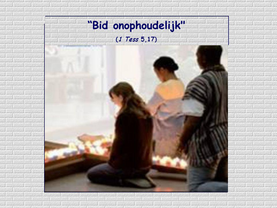 Het is zaak 'onophoudelijk' te bidden, niet alleen voor onze behoeften, maar ook om bij te dragen aan de opbouw van het Lichaam van Christus en aan de volle en zichtbare gemeenschap in de kerk van Christus.