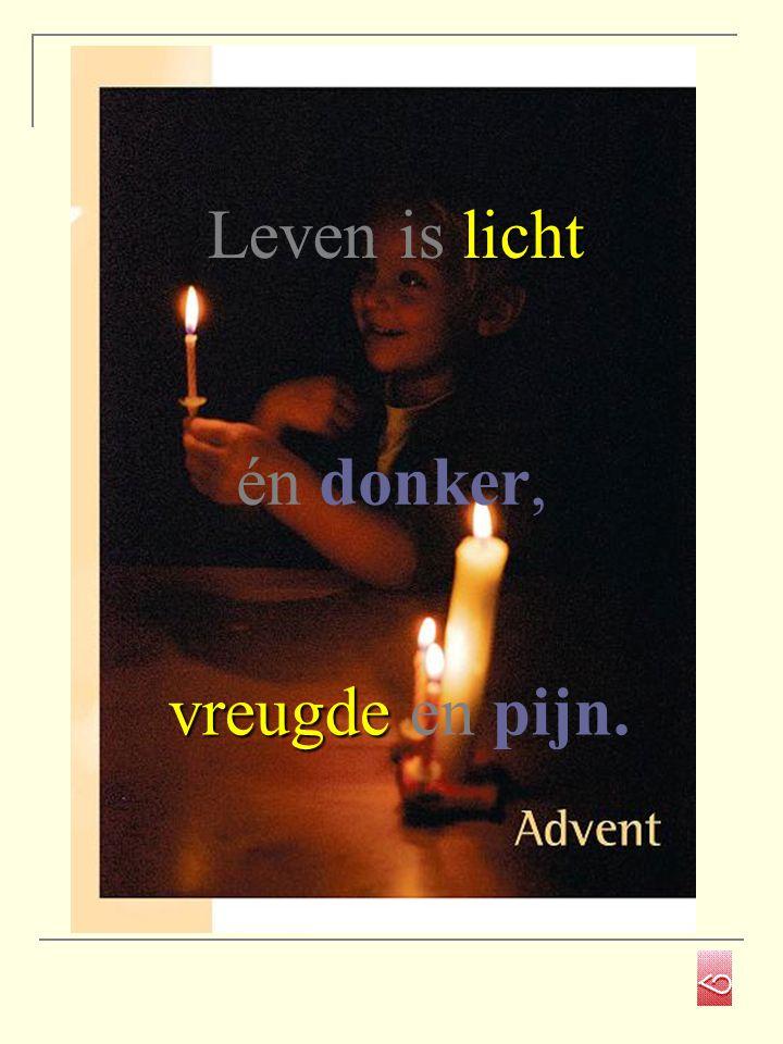 vreugde vreugde en pijn. licht Leven is licht én donker,