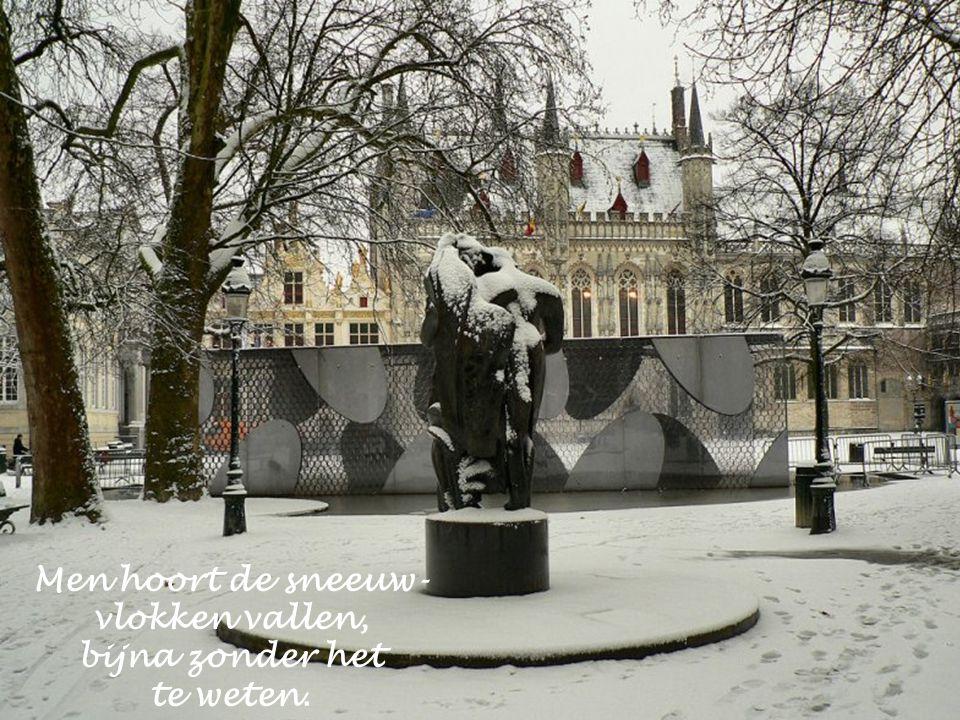 """Zo beschrijft Marc De Smedt het: """" Wij houden van de neerdwarrelende sneeuw."""