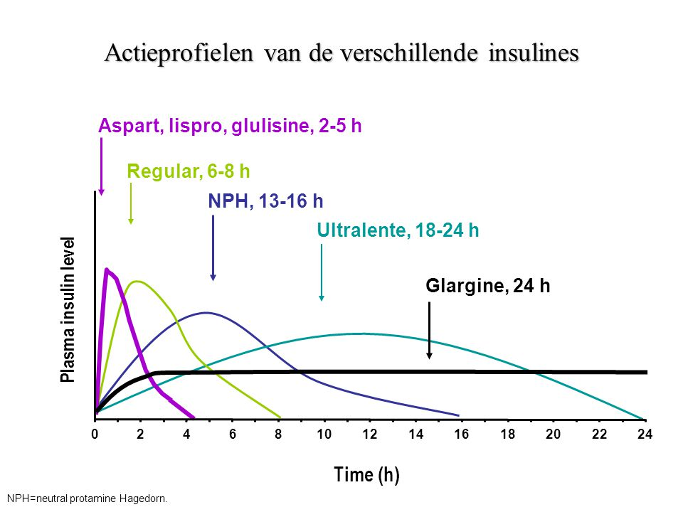 Actieprofielen van de verschillende insulines Plasma insulin level Regular, 6-8 h NPH, 13-16 h Ultralente, 18-24 h Time (h) Glargine, 24 h Aspart, lis