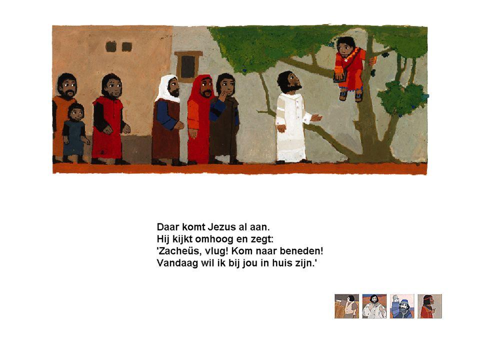 Zacheus – Jezus volgen Aantal interressante dingen: •Actie - Rigoreus Jezus volgen - Niet eigen beweging - Kom uit die boom.