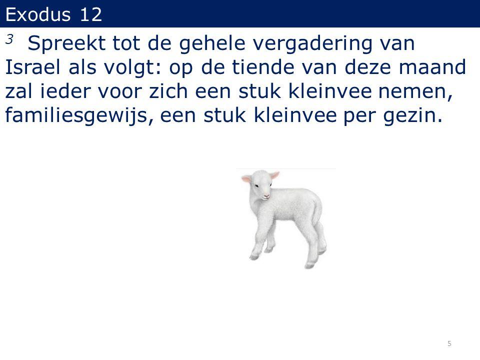 Exodus 12 (...) 5 Een gaaf, mannelijk, eenjarig stuk kleinvee moet gij nemen; gij kunt dit nemen van de schapen of van de geiten.