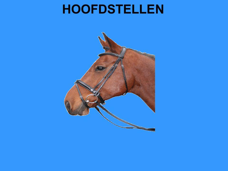 HOOFDSTELLEN