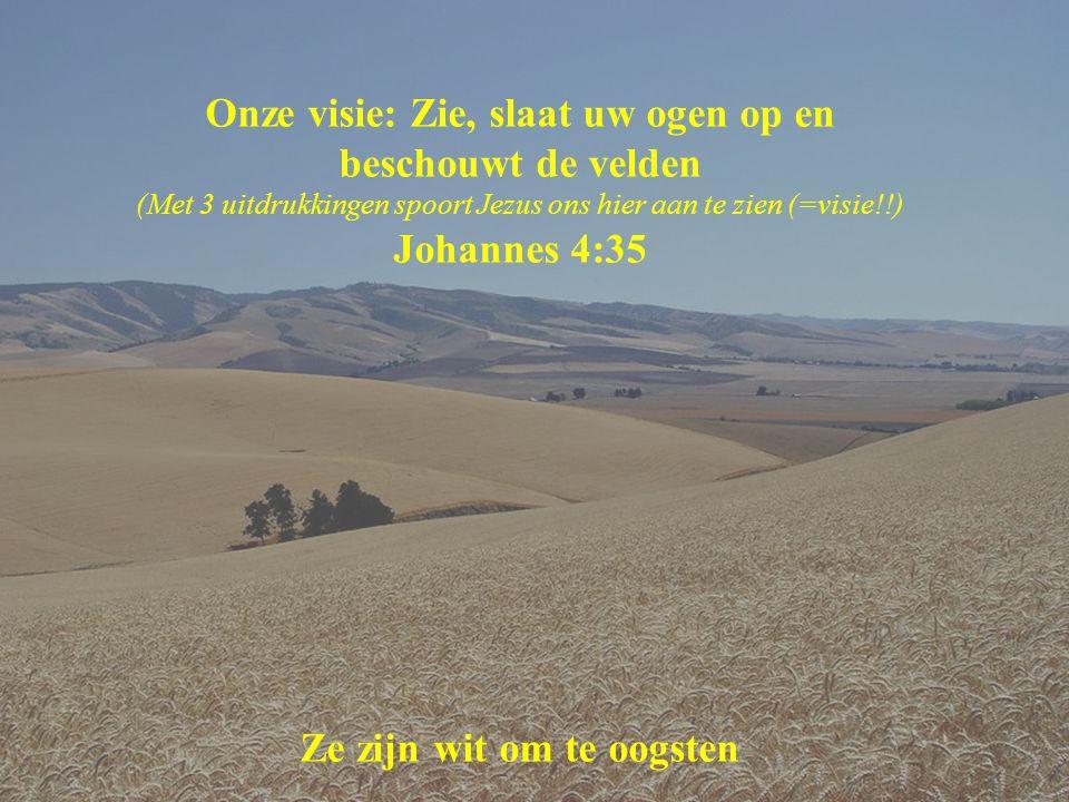 Onze visie: Zie, slaat uw ogen op en beschouwt de velden (Met 3 uitdrukkingen spoort Jezus ons hier aan te zien (=visie!!) Johannes 4:35 Ze zijn wit om te oogsten
