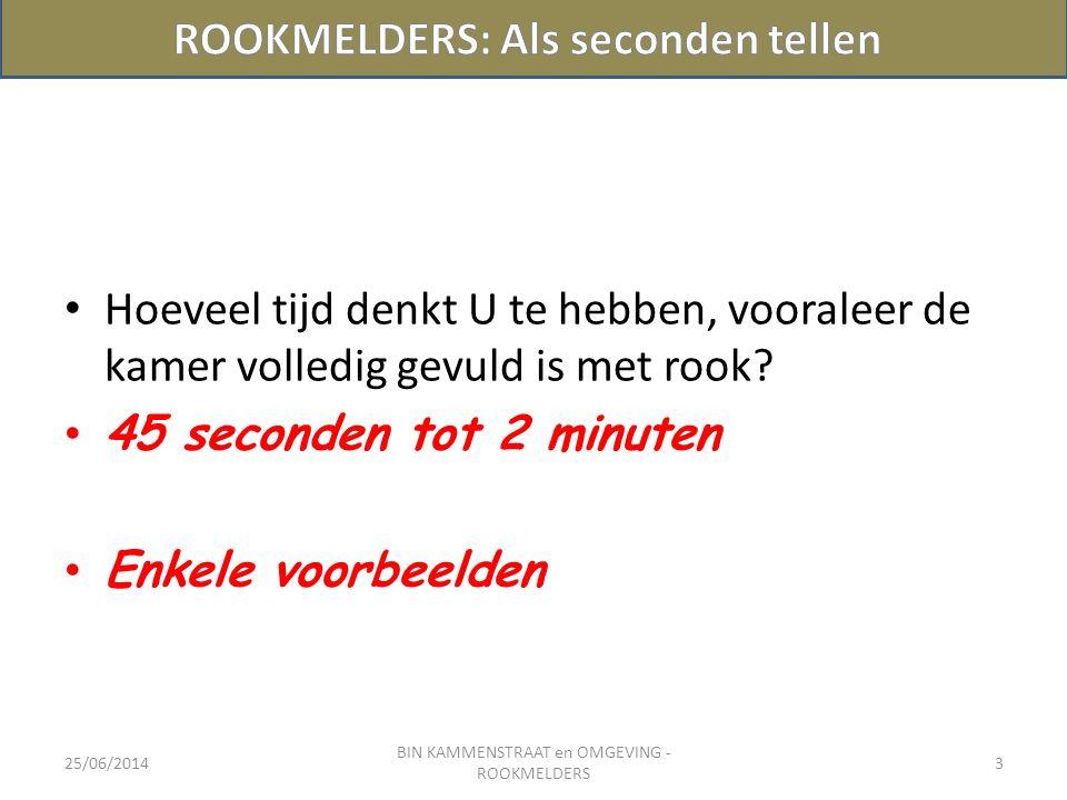 25/06/2014 BIN KAMMENSTRAAT en OMGEVING - ROOKMELDERS 4