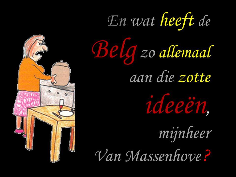 En wat heeft de Belg zo allemaal aan die zotte ideeën, mijnheer Van Massenhove ?