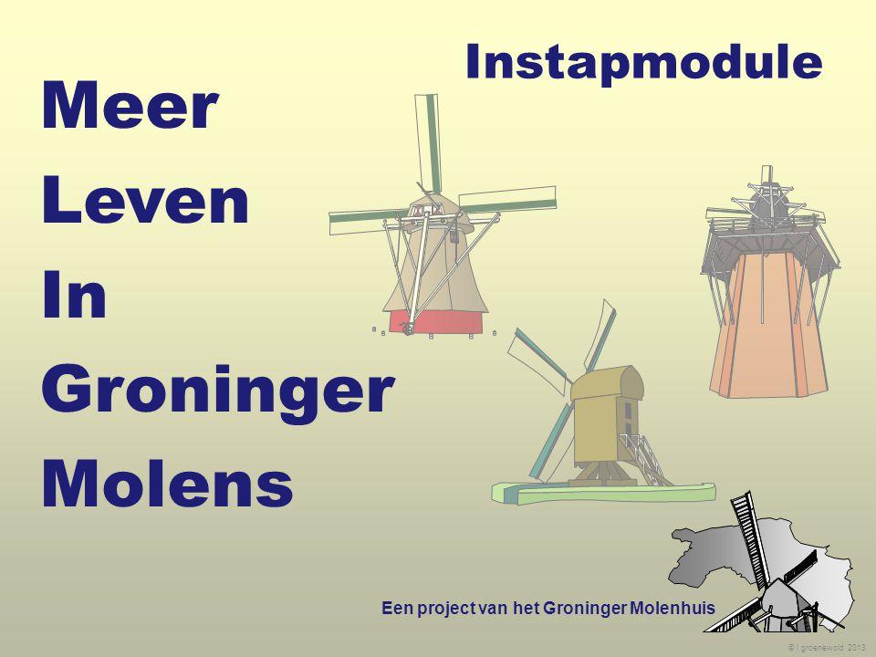 © l groenewold 2013 Instapmodule Een project van het Groninger Molenhuis Meer Leven In Groninger Molens