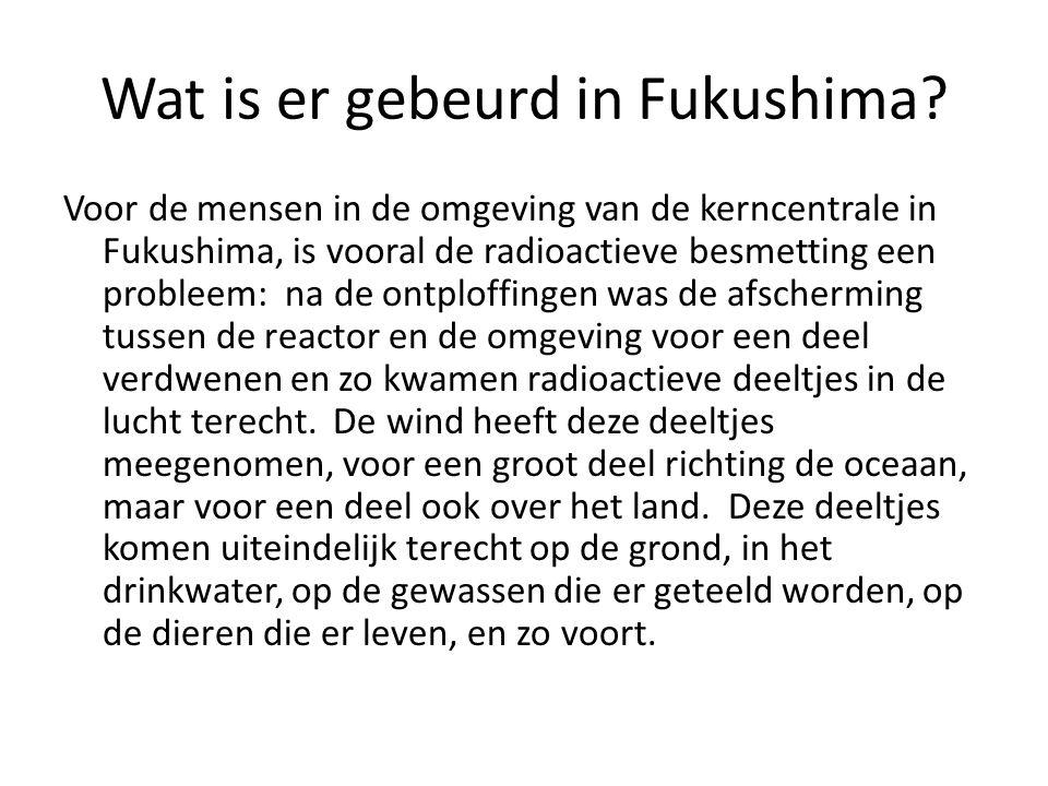 Wat is er gebeurd in Fukushima.