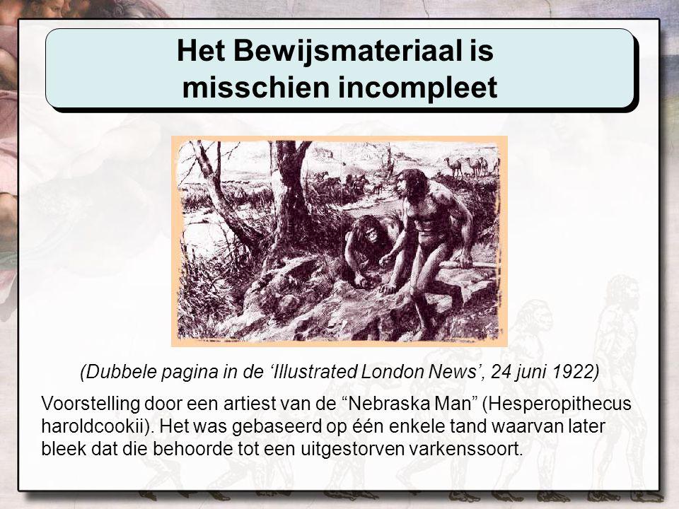 Het Bewijsmateriaal werd misschien achtergehouden Eugene Dubois en de Javamens Omdat de schedelkap (getoond hierboven) gevonden werd naast een mensachtig groot been, beweerde Dubois dat beide aan een aapmens toebehoorden, gekend als Pithecanthropus.