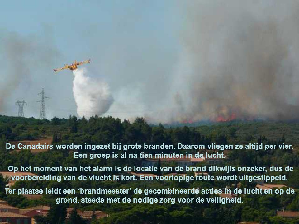Hun missie: het bos beschermen Tijdens het seizoen van bosbranden zijn de bemanningen van zonsopgang tot zonsondergang paraat.