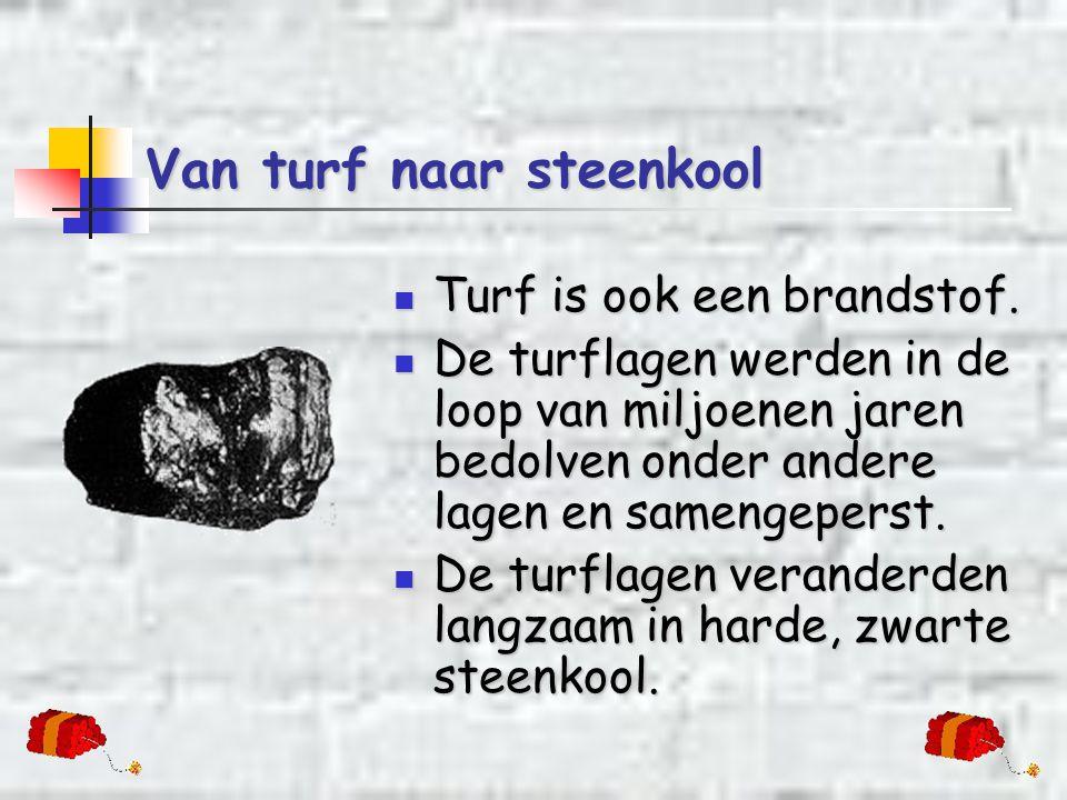 Van turf naar steenkool  Turf is ook een brandstof.