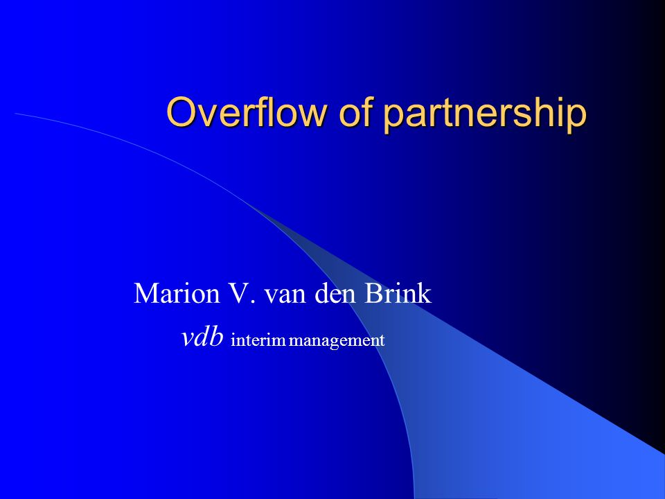 Overflow of partnership Marion V. van den Brink vdb interim management