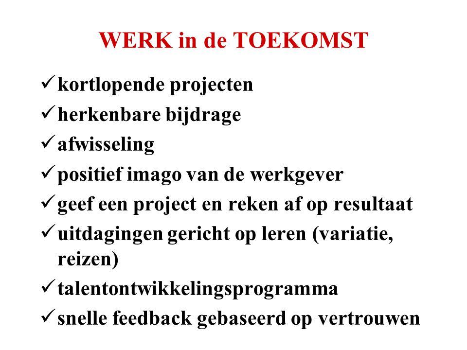 WERK in de TOEKOMST  kortlopende projecten  herkenbare bijdrage  afwisseling  positief imago van de werkgever  geef een project en reken af op resultaat  uitdagingen gericht op leren (variatie, reizen)  talentontwikkelingsprogramma  snelle feedback gebaseerd op vertrouwen