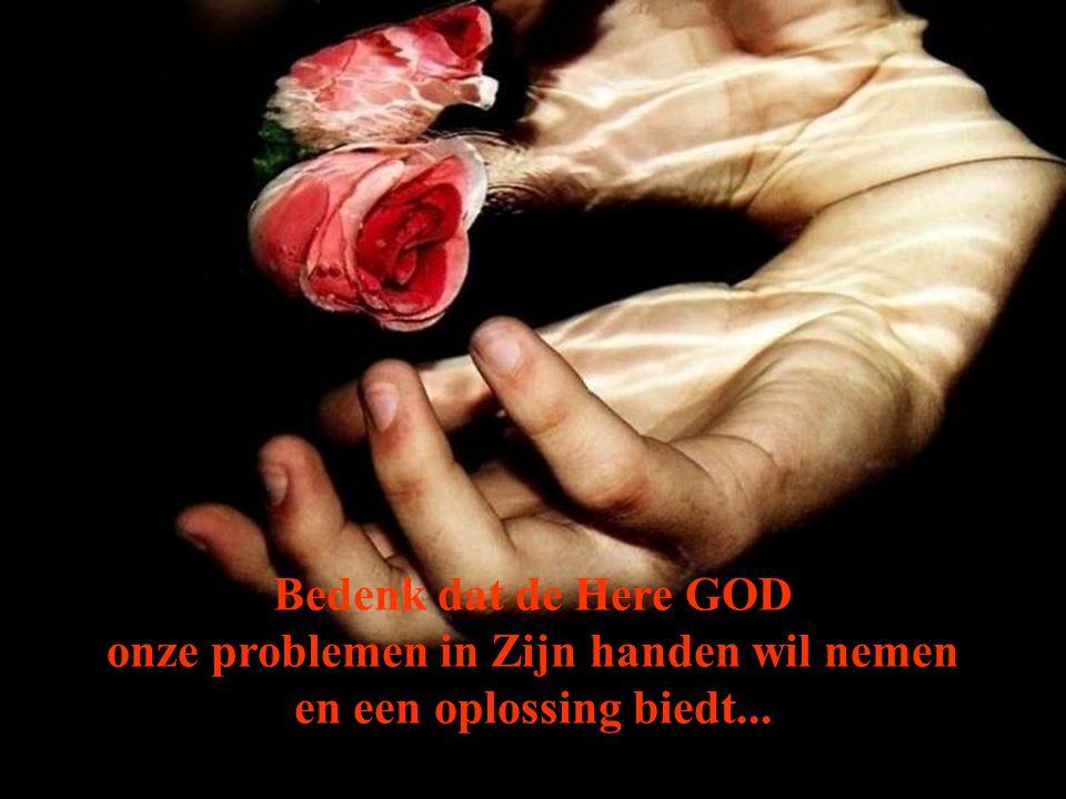 Heb je je ooit in een moeilijke situatie bevonden, waarvoor geen oplossing voorhanden was, en je schreeuwde om liefde???