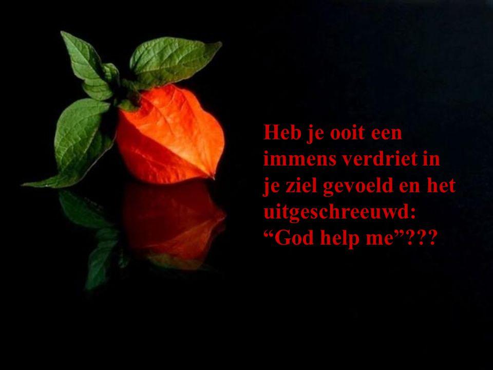 Bedenk dat de Here GOD onze problemen in Zijn handen wil nemen en een oplossing biedt...