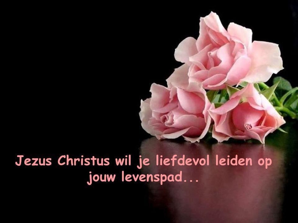 """Jezus zegt: """"Komt tot Mij allen die vermoeid en belast zijt, en Ik zal je rust geven"""""""