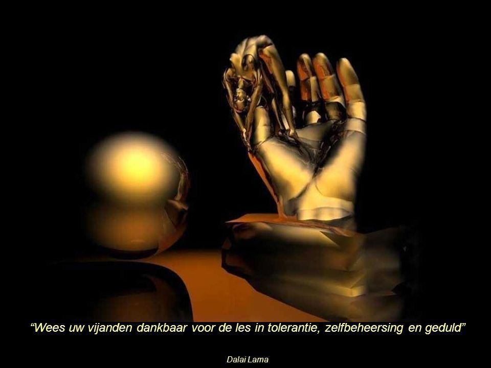 Wees uw vijanden dankbaar voor de les in tolerantie, zelfbeheersing en geduld Dalai Lama