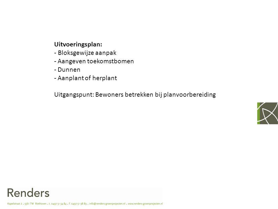 Uitvoeringsplan: - Bloksgewijze aanpak - Aangeven toekomstbomen - Dunnen - Aanplant of herplant Uitgangspunt: Bewoners betrekken bij planvoorbereiding