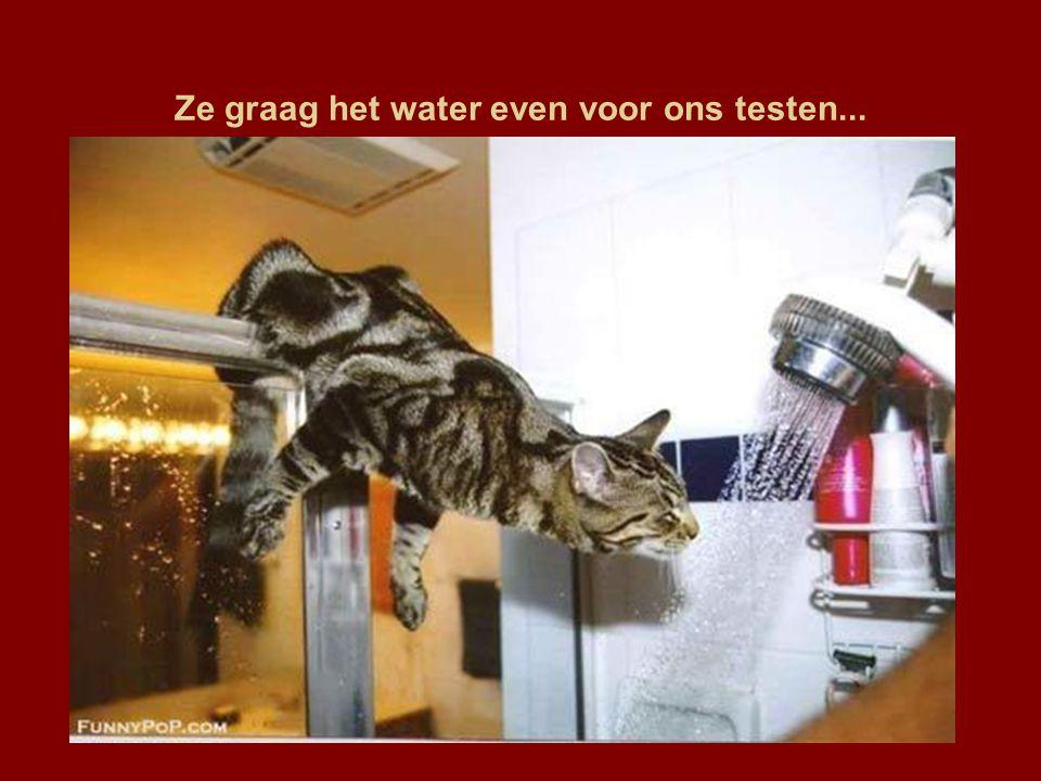 Ze graag het water even voor ons testen...