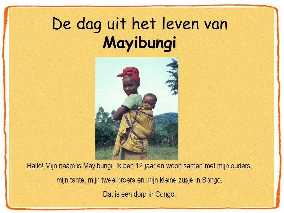 De dag uit het leven van Mayibungi Hallo. Mijn naam is Mayibungi.