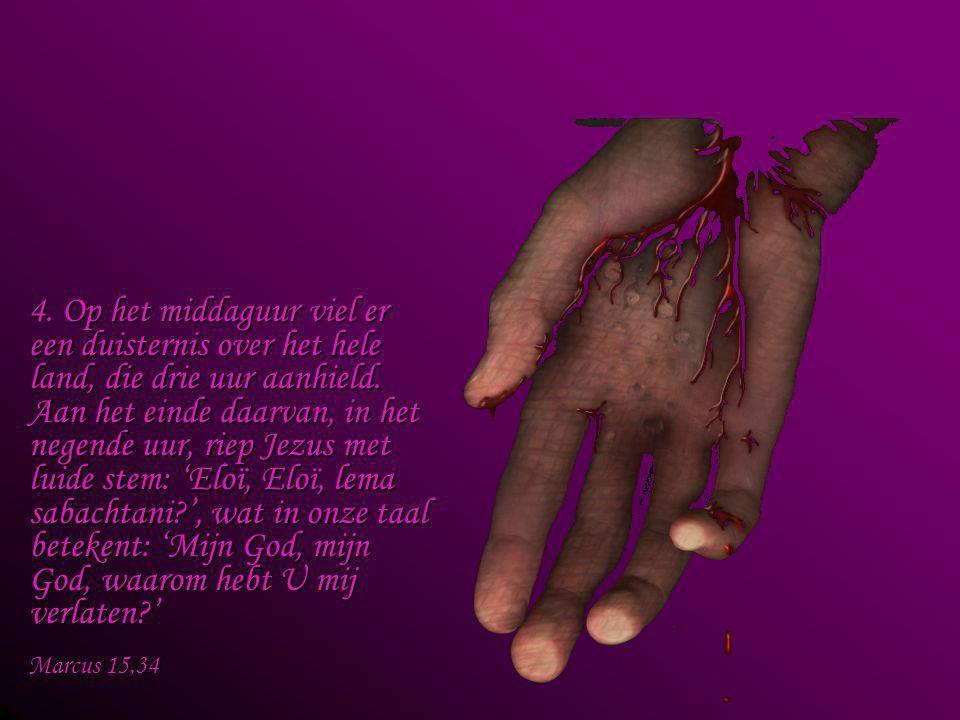 3. Toen Jezus Zijn moeder zag staan, en bij haar de leerling van wie Hij veel hield, zei Hij tegen Zijn moeder: 'Dat is uw zoon,' en daarna tegen de l